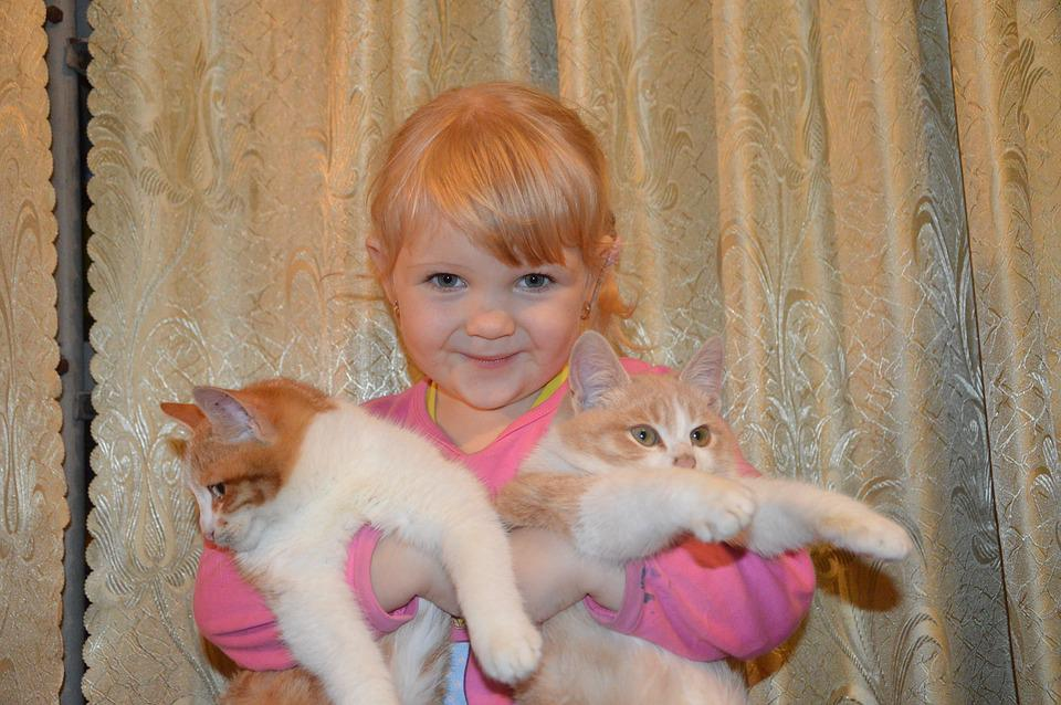 Baby, Girl, Cat, Kids, The Little Girl, Pets, Childhood