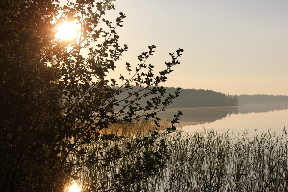 Morning, The Morning Sun, Saimaa, Midsummer
