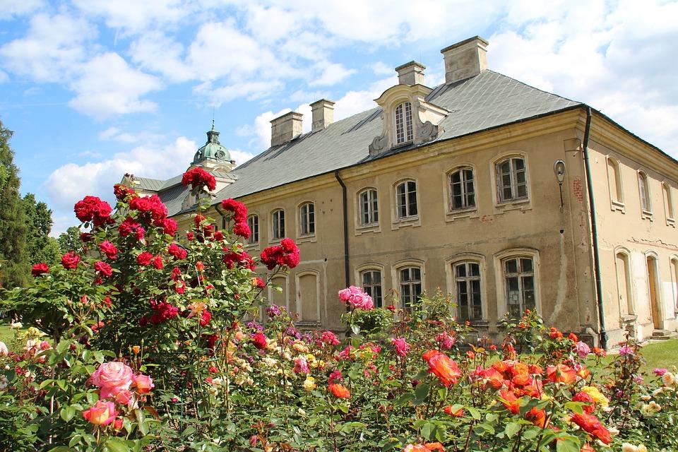 The Palace, Flowers, Nature, Garden, Flourishing