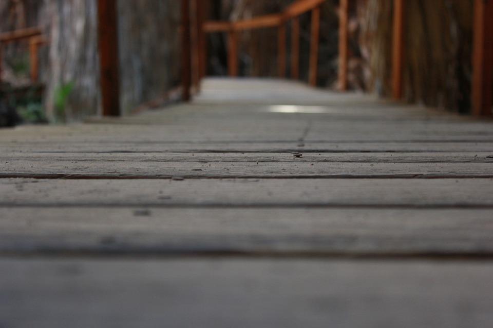 The Path, Way, Footbridge, Wooden Bridge