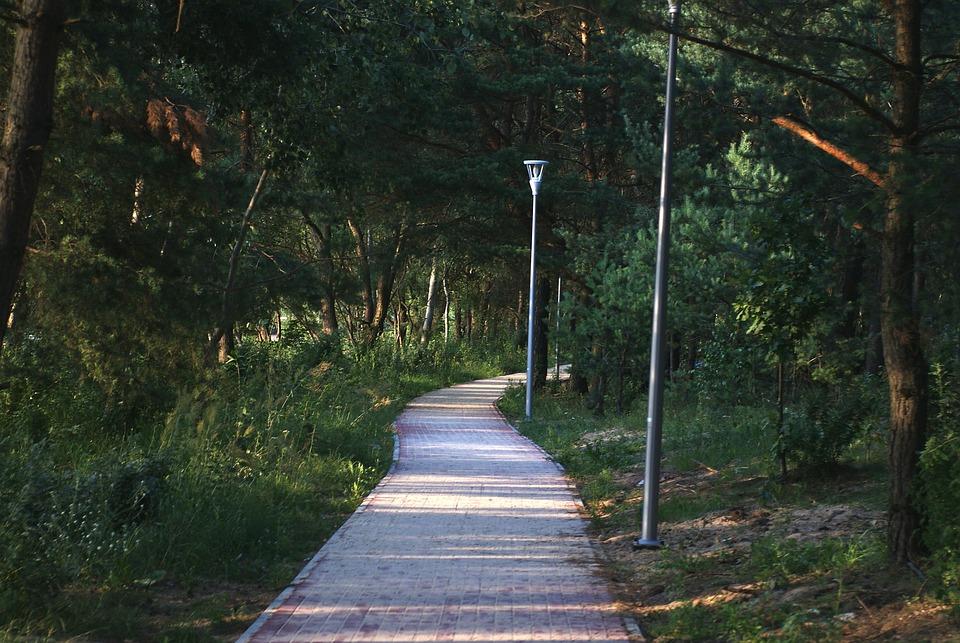 Walkway, Landscape, City, Park, The Path, Nature
