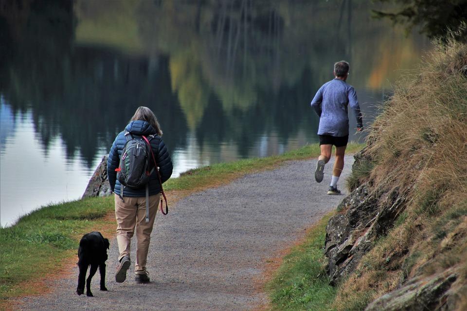 Morning, Running, The Path, Lake, Rocks, Water