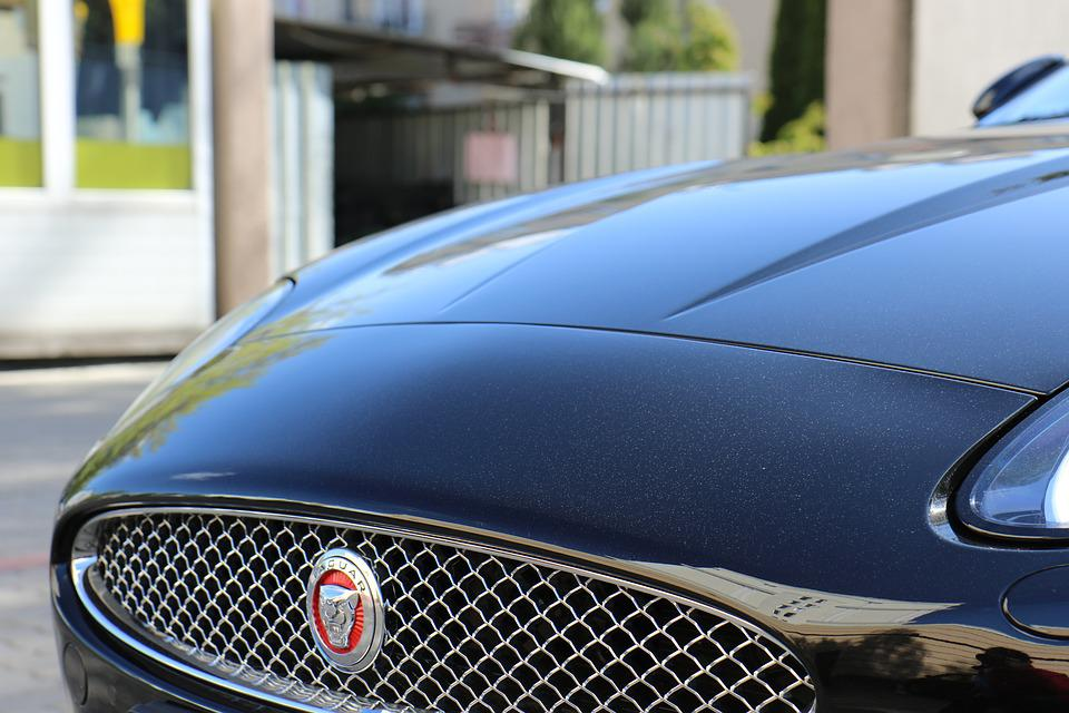 free photo the vehicle car jaguar logo sign mask emblem max pixel