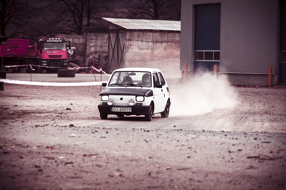 Rally, Race, Sport, Car, Auto, The Vehicle, Speed, Dust