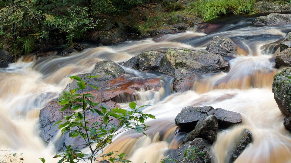 Fors, Water, Nature, The Water Stream, Stream