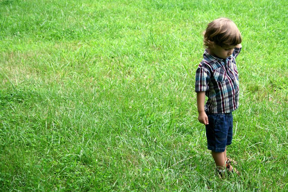Child, Grass, Field, Boy, Green, Nature, Thinking