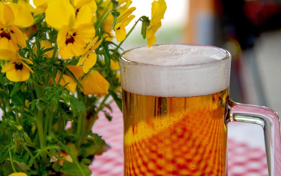Beer, Glass, Drink, Beer Garden, Refreshment, Thirst