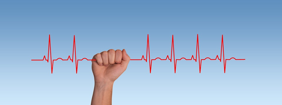Pulse, Frequency, Heartbeat, Heart, Curve, Live, Thread