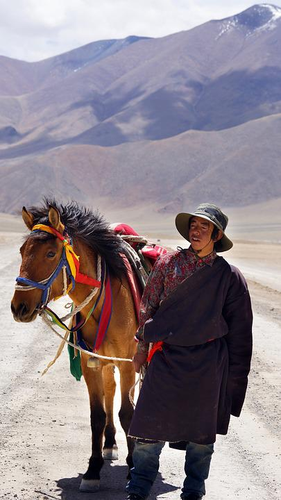 Tibet, Wrangler, Horse, Mountains, Horse People, People