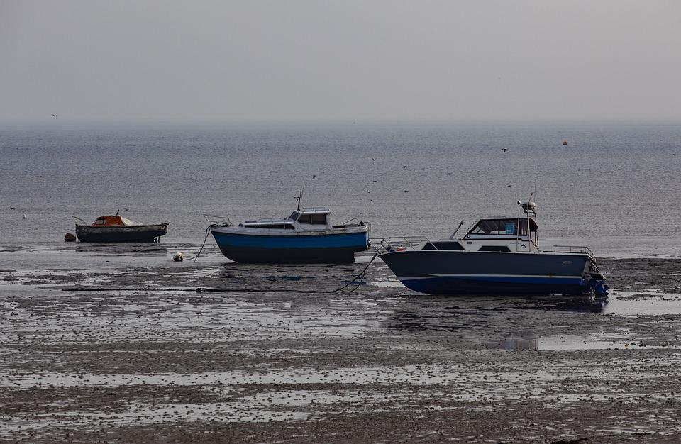 Tide Out, Tide, Boat, Low Tide, Mud, Shore