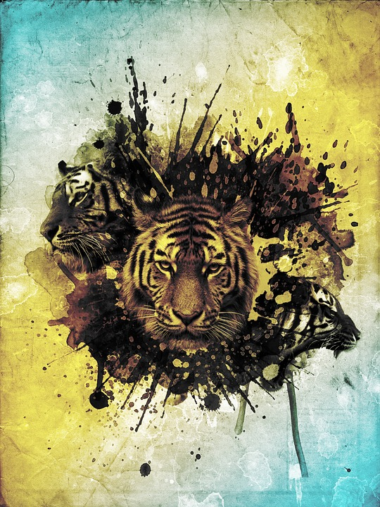 Tiger, Abstract, Photoshop, Collage, Wildcat