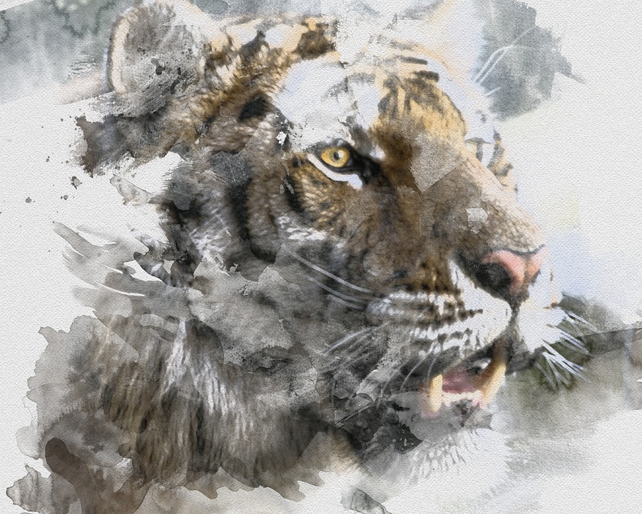 Tiger, Watercolor, Artistic, Painting, Drawing, Roar