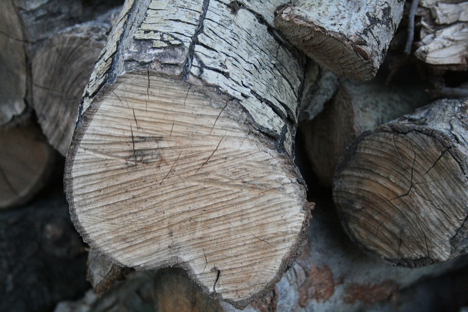 Wood Pile, Sawn, Wood, Timber, Lumber, Stack, Firewood