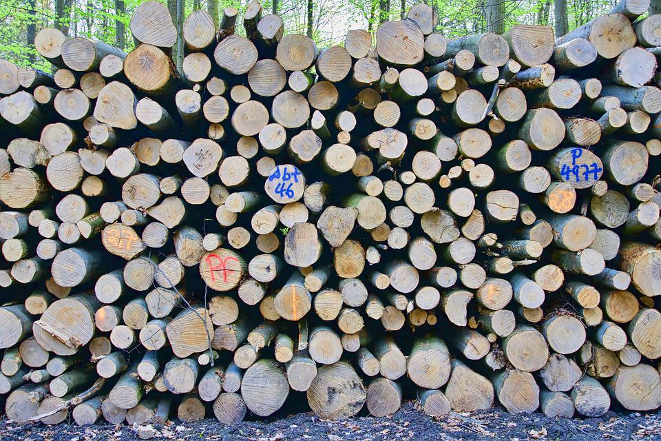 Logs, Wood, Pile, Forestry, Timber, Lumber, Trees