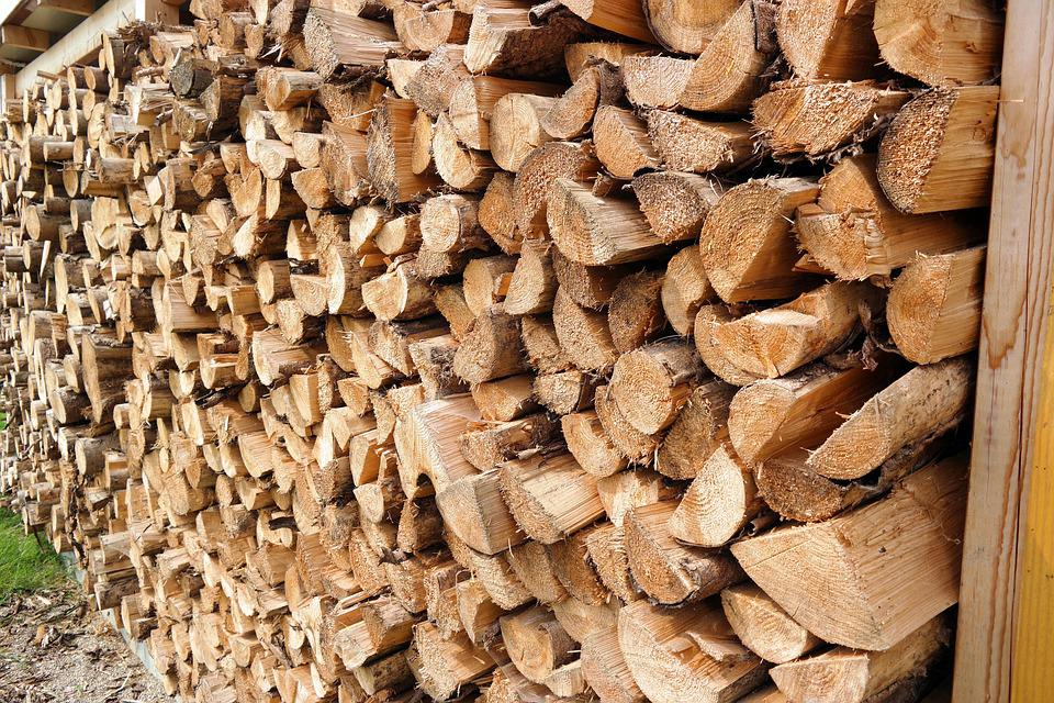 Winter, Wood, Forest, Nature, Cold, Rustic, Timber