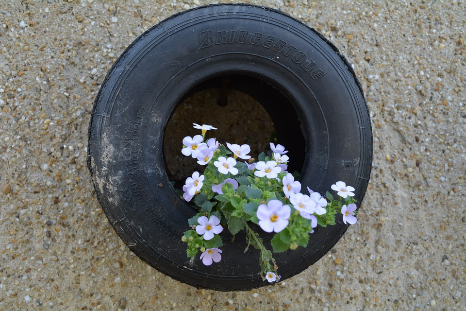 Tire, Flower, Idea, Garden, Dekoracia