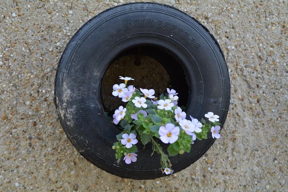 Tire, Flower, Idea, Garden, Dekoracia