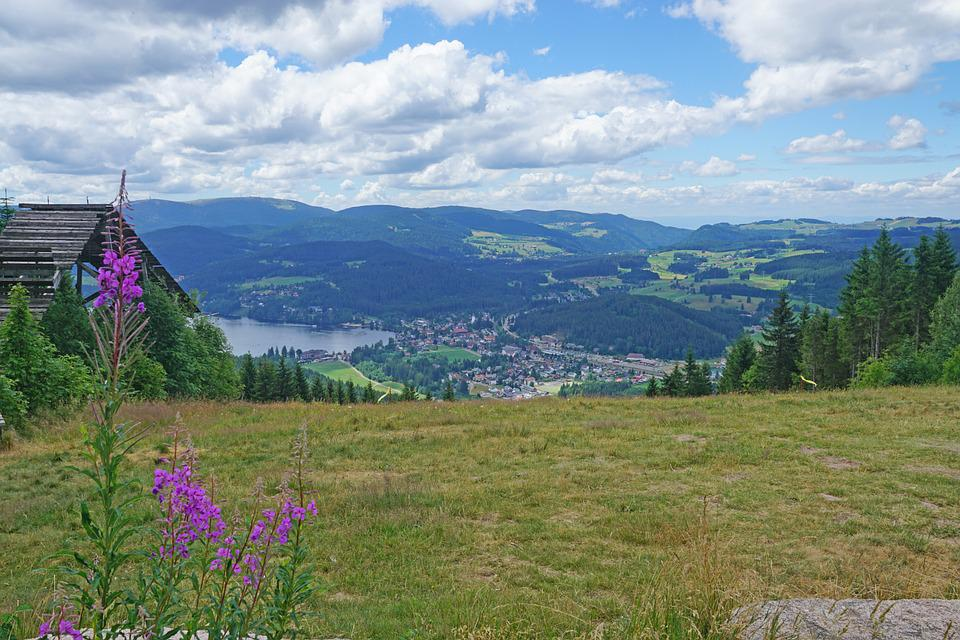 Hochfirst, Titisee, Landscape