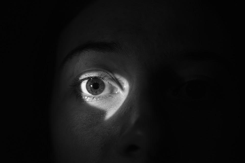 Eye, Light, Shadow, Monitor, Spy, To Watch