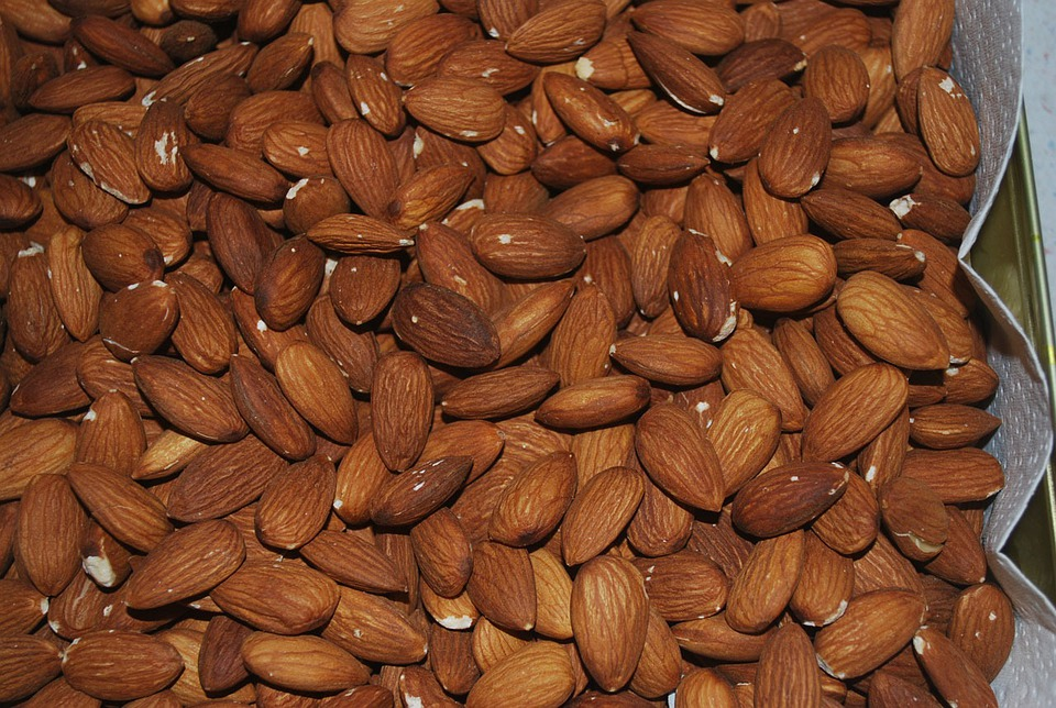 a description of almond nuts from the almond tree
