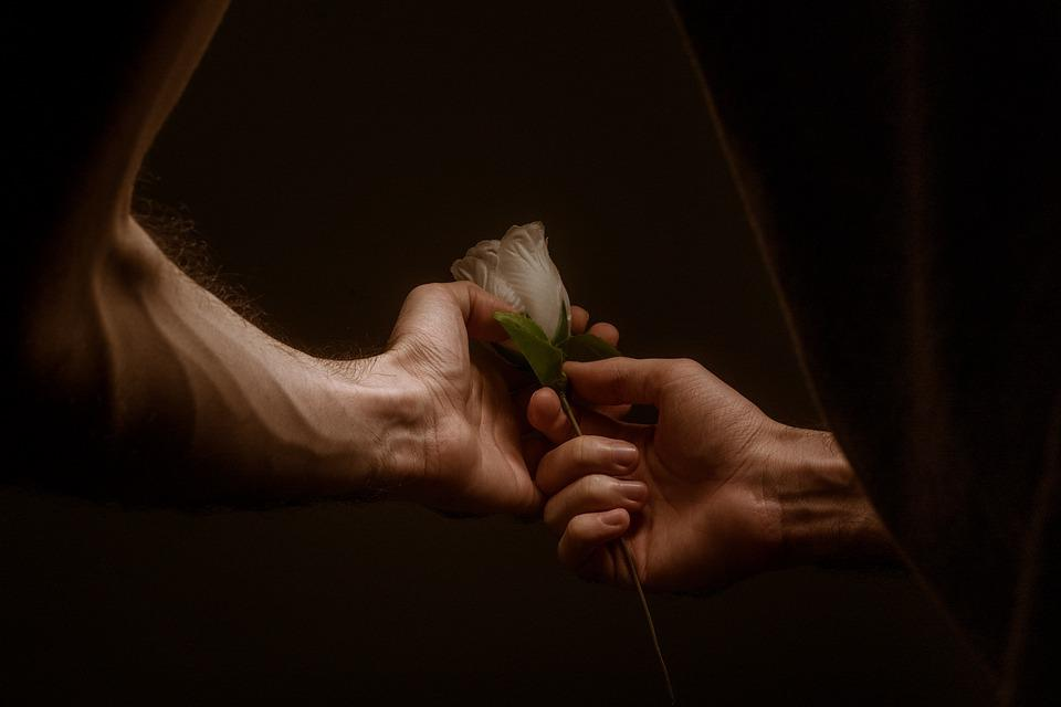 Hands, Love, Rose, Together, Couple, Lovers, Romantic