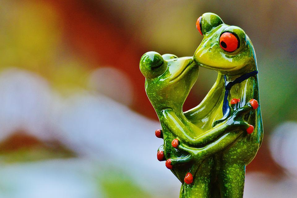 Image of: Dogs Valentines Day Love Frogs Pair Kiss Together Fig Max Pixel Free Photo Together Valentines Day Fig Pair Kiss Frogs Love Max Pixel