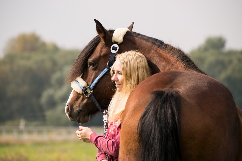 Horse, Human, Woman, Girl, Friendship, Togetherness