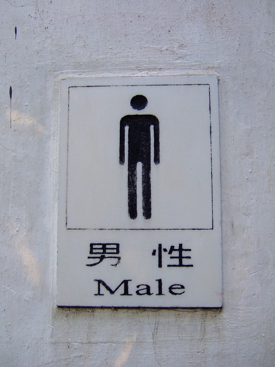 Male, Toilet, Sign, Chinese, Bathroom
