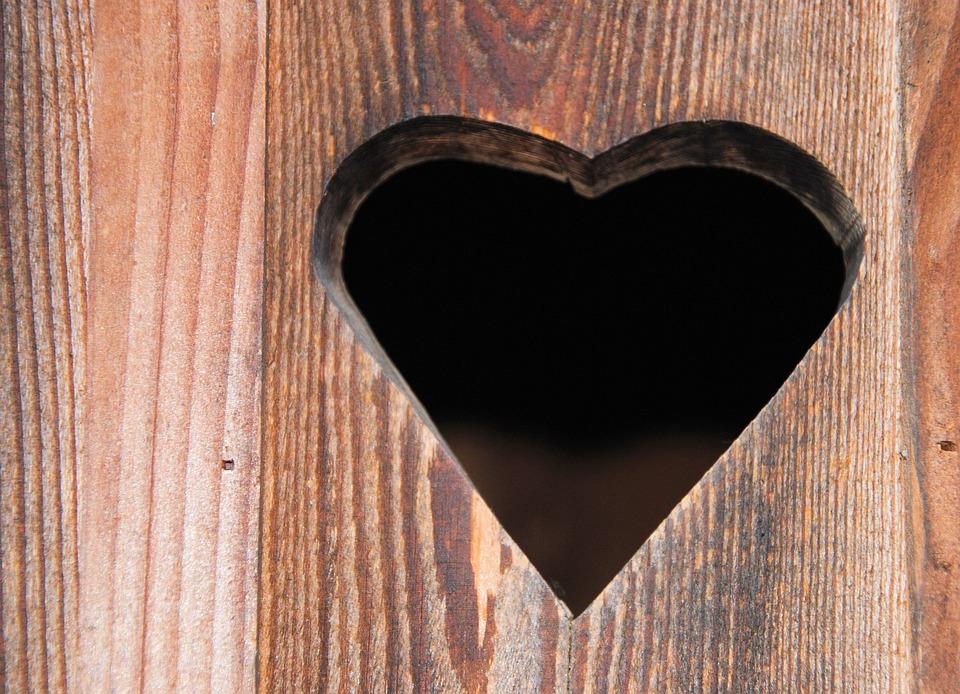 Heart, Wooden Door, Heart Door, Toilet Door, Romance