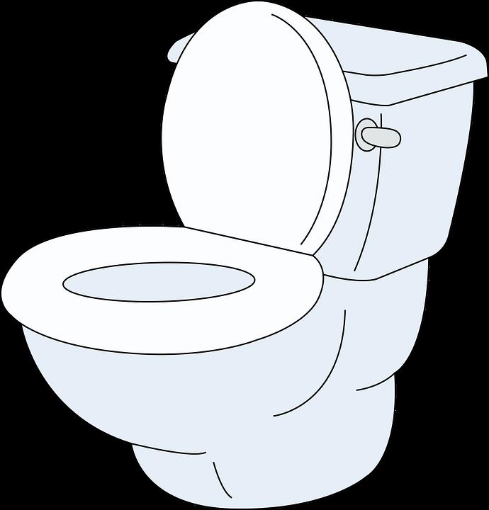 Toilet, Toilet Seat, Bathroom, Wc, Flush Toilet