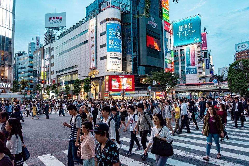 Japan, Travel, Nature, Asia, Plant, Architecture, Tokyo
