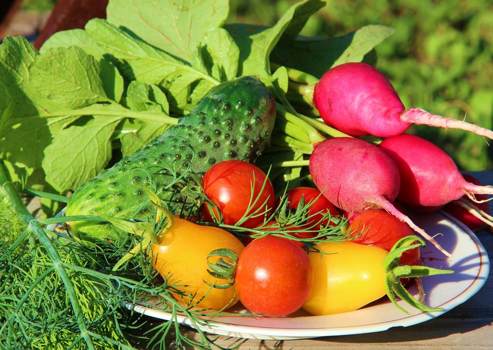 Food, Tomatoes, Vegetables, Greens, Nutrition, Plate