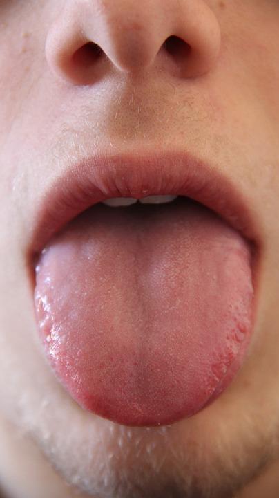 Free Photo Tongue Mouth Anatomy Mammal Face Head Human Max Pixel