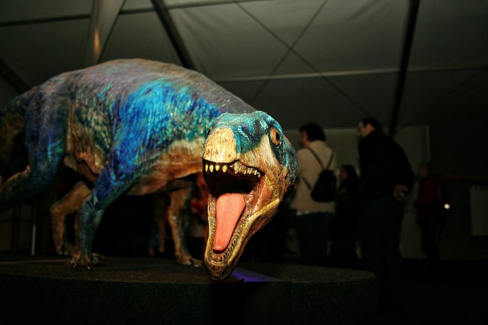 Dinosaur, Model, Foot, Tooth, Urtier, Replica