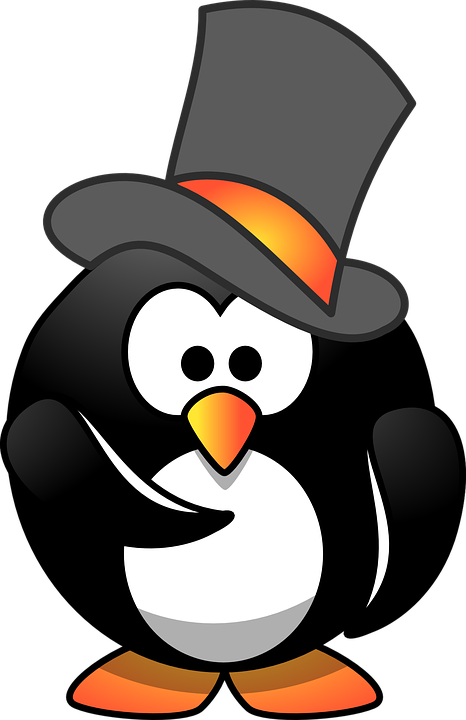 Penguin, Hirer, Hiring, Top Hat, Face, Person, Hat