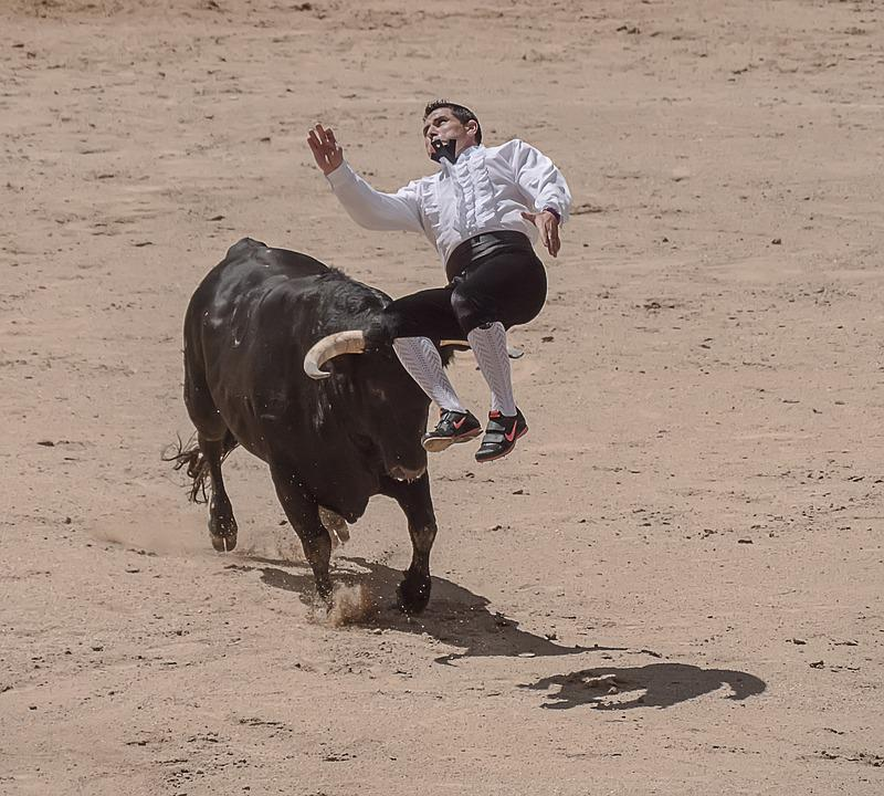 Trimmers, Torero, Bullfighters, Sales, Madrid, Bulls