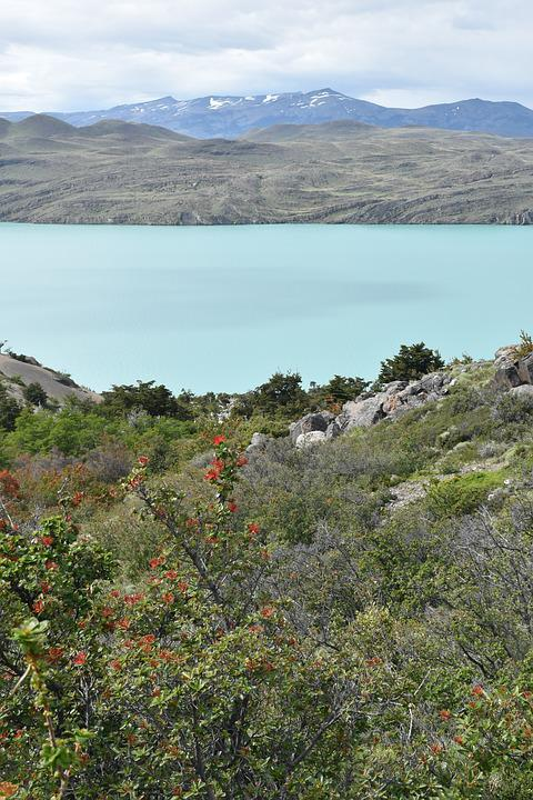 Patagonia, Torres Del Paine, National Park, Lake, Water