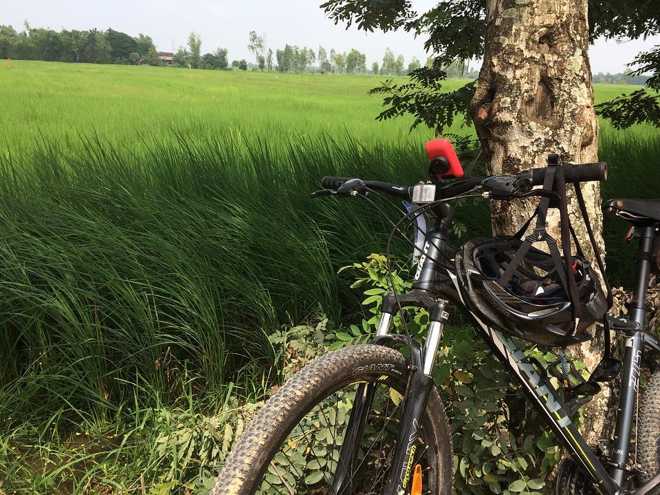 Bicycle, Touring, Bike, Ride, Travel, Lifestyle
