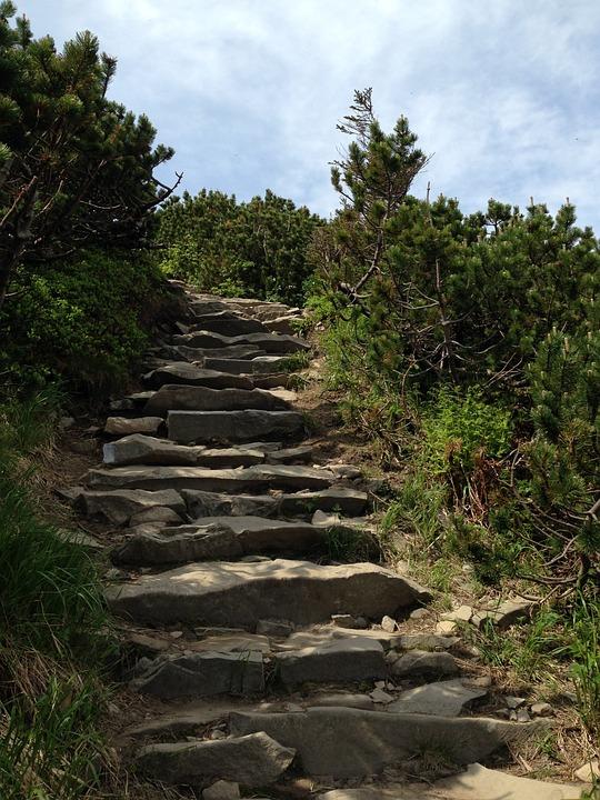 Mountains, Beskids, Hiking Trail, Hiking, Tourism