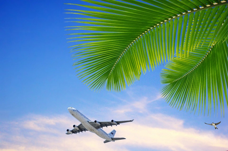 Sky, Blue Sky, Clouds, Plane, Taking Off, Trip, Tourism