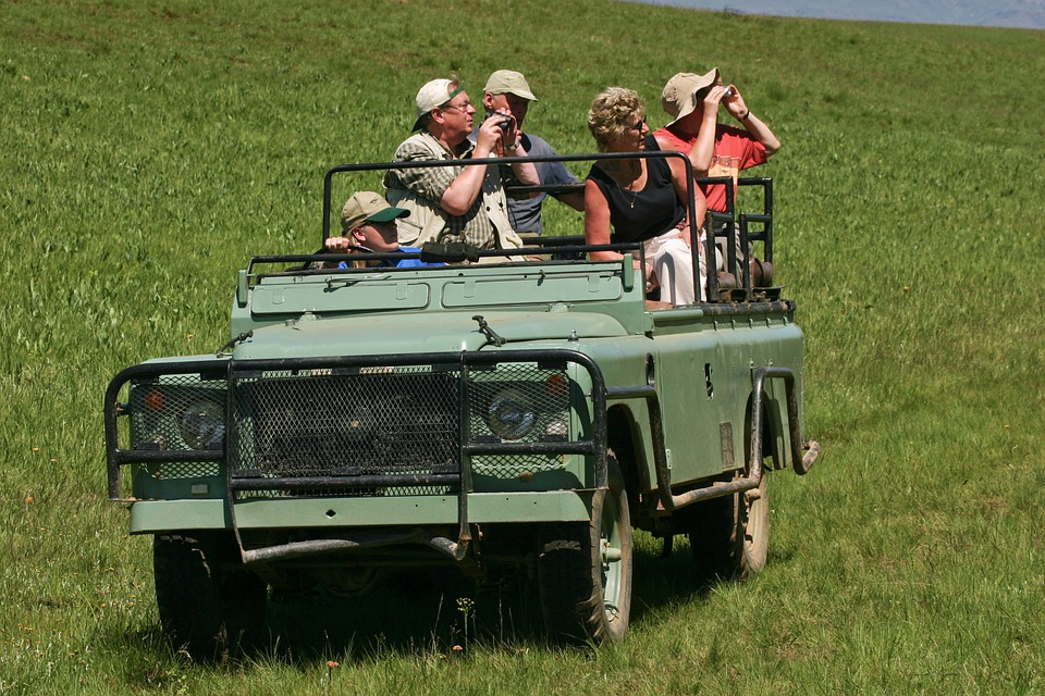 Land Rover, Jeep, Safari, Old, Defender, Tourists
