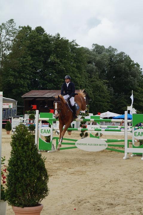 Tournament, Horse, Reiter, Jump, Parcours