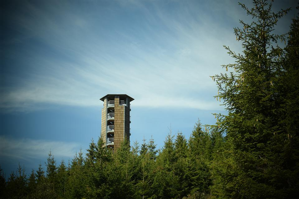 Tower, Nature, Germany, Trees, Pine, Pine Tree, Sky