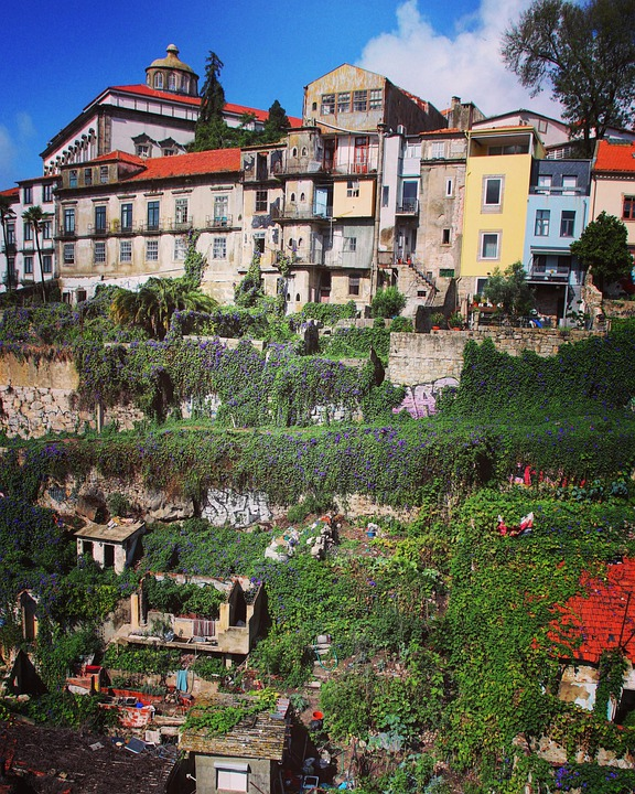 Buildings, Port, Town, Garden, City, Architecture