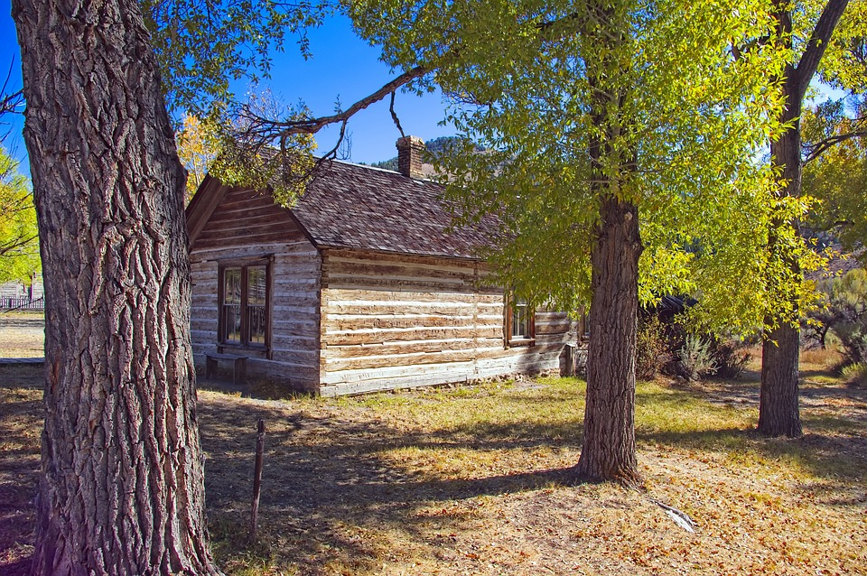 Cottonwoods And Abandoned Home, Ghost, Town, Bannack