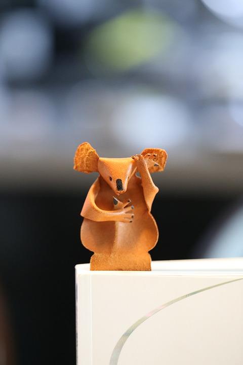 Koala, Book, Toy