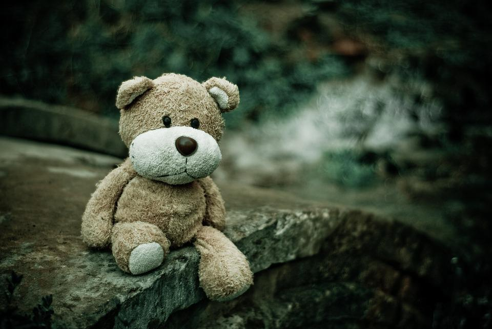 Close-up, Macro, Teddy Bear, Toy, Alone, Lost