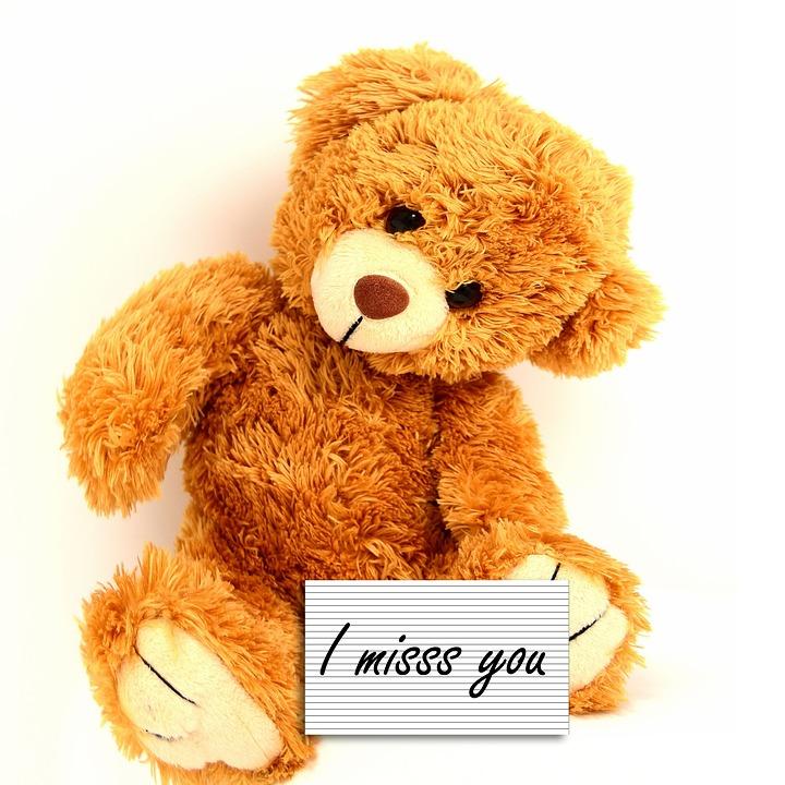 Teddy Bear, Stuffed Animal, Toy, Bear, Text, Surprise