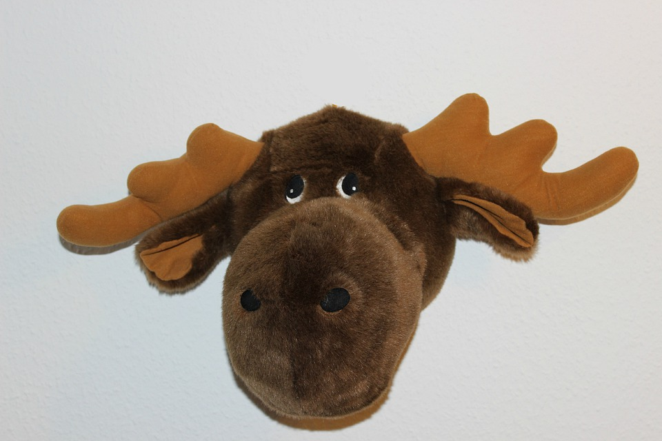 Soft Toy, Moose Head, Stuffed Animal, Toys, Teddy Bear