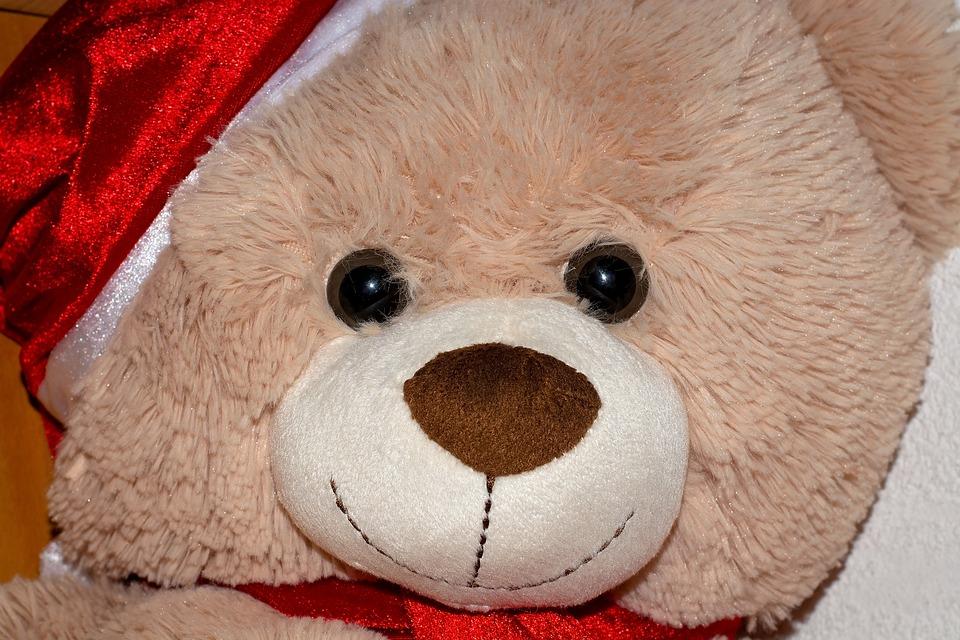 Teddy, Bear, Teddy Bear, Brown, Toys, Stuffed Animal